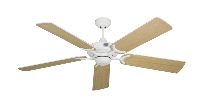 """Picture of Coastal Air Pure White with 52"""" Unfinished Oak Blades"""