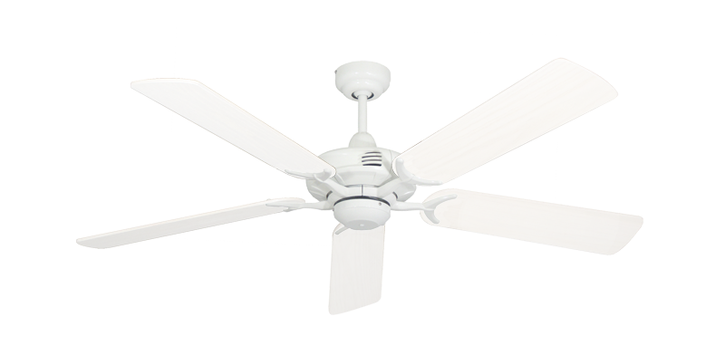 Coastal Air Ceiling Fan In Pure White