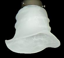 037 White Scavo wCoil